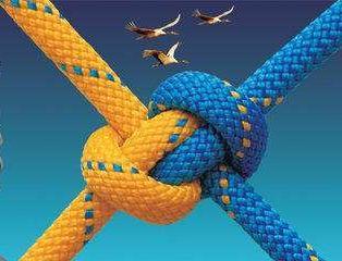 团队管理中提高团队凝聚力的方法